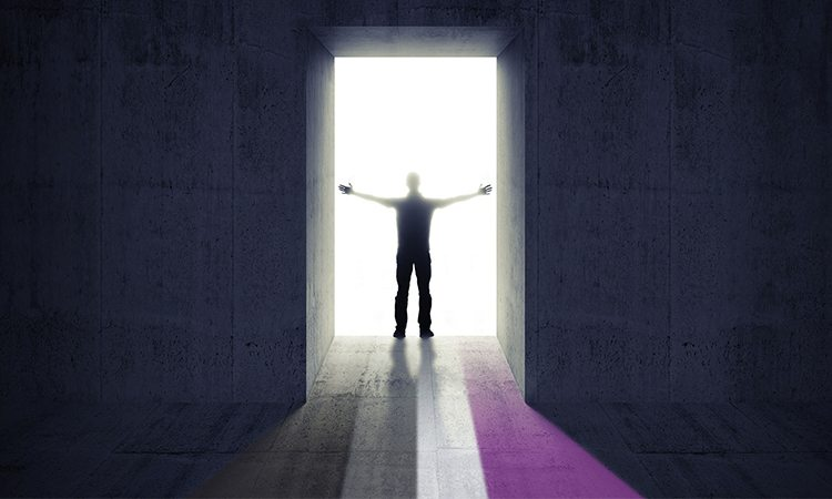 Putting Asexuality in the Rainbow